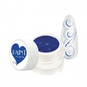 Paint Gel Kolor - 09 Cornflower